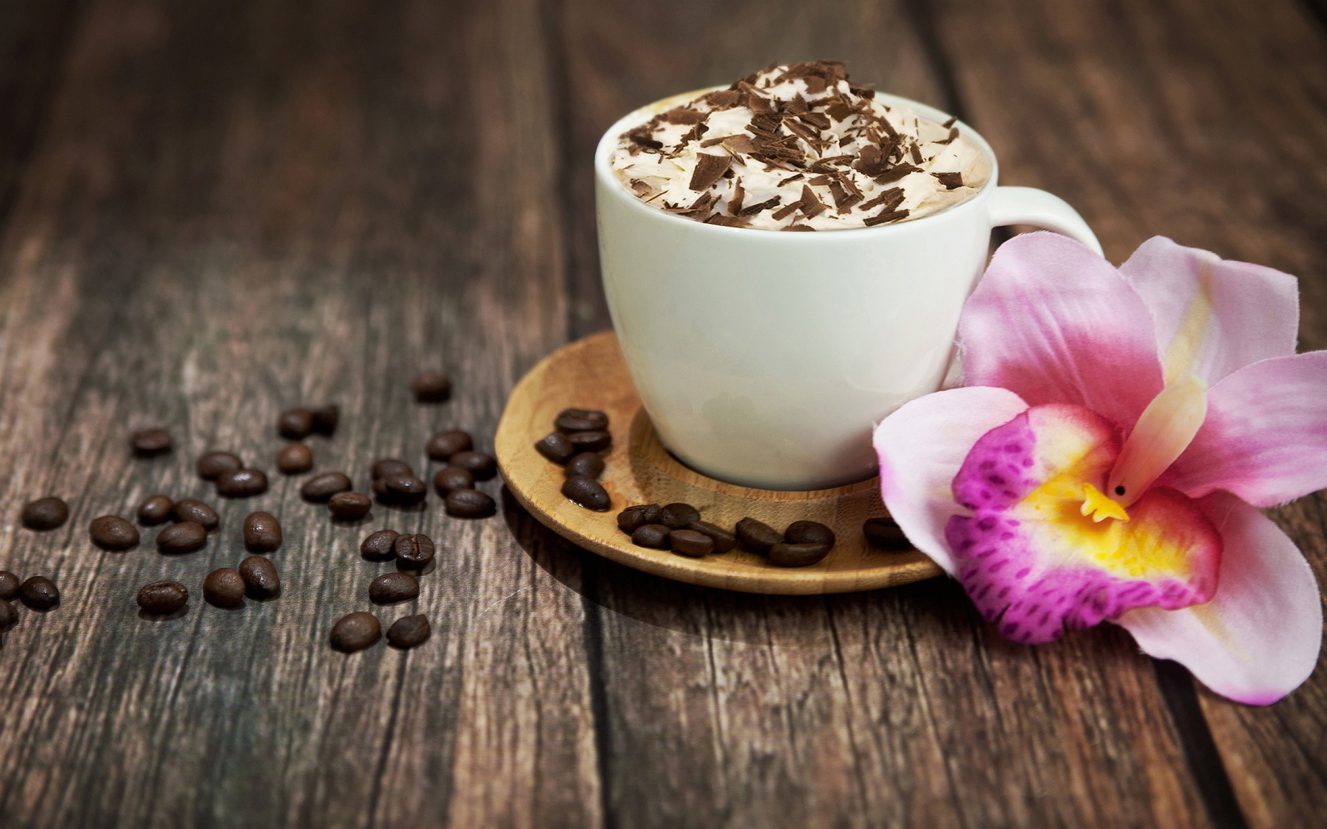 Best Cappuccino Makers Reviews
